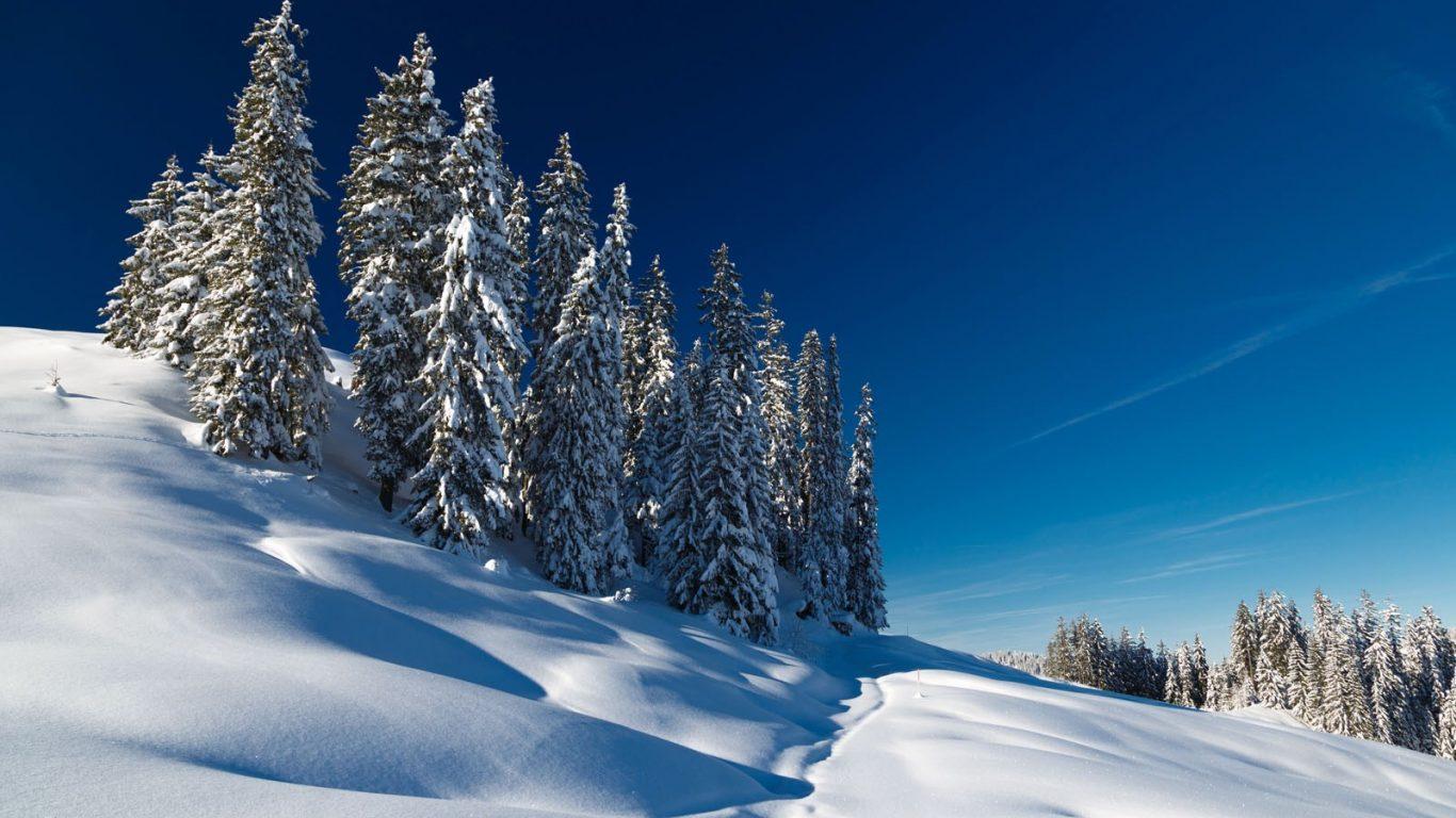 Footprints Sky Winter Cold Snow Country Walk Wallpaper Desktop